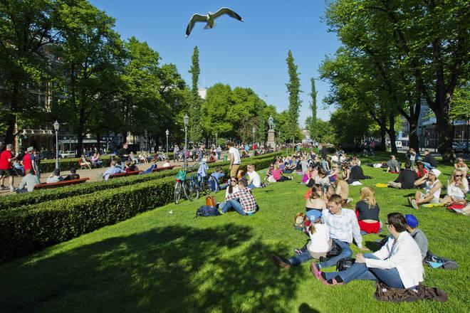 Helsinki, Phan Lan cay xanh, trong cay xanh, cay bong mat
