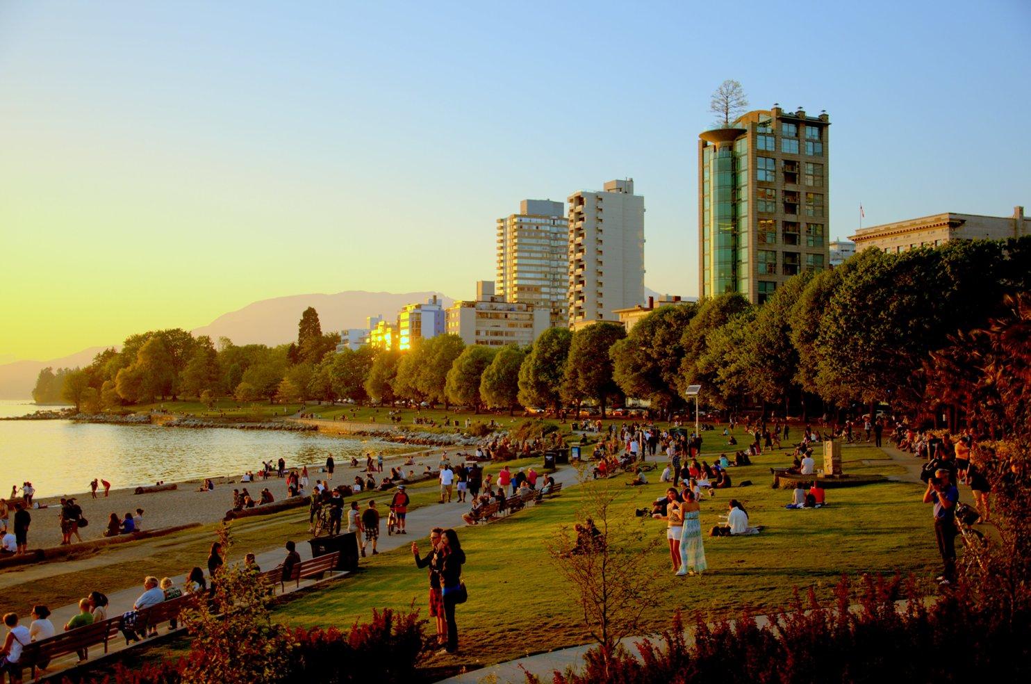 Vancouver, Canada cay xanh, trong cay xanh, cay bong mat