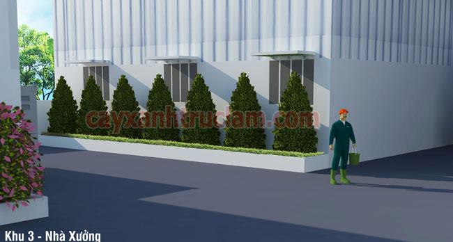 Hàng tùng được sắp xếp trồng tại nhà xưởng Nhựa Á Đông