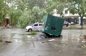 cây xanh gãy đổ sau bão số 3