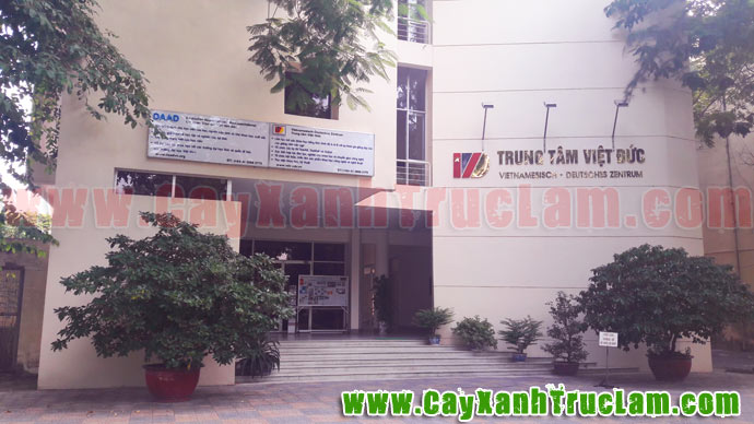 Trung tâm Hợp tác Khoa học Kỹ thuật Việt Đức, Trường Đại học Bách Khoa Hà Nội.