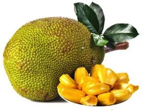 TRỒNG MUA BÁN CÂY MÍT Mít được thế giới coi là cây ăn quả siêu thực phẩm