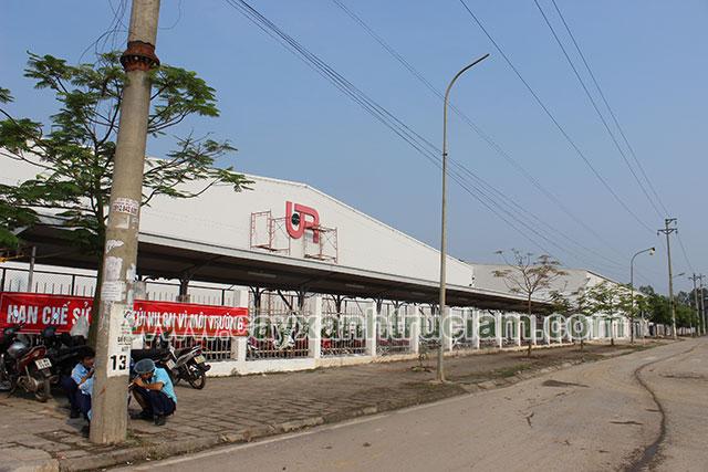 Trồng Cây Xanh Cho URC Việt Nam