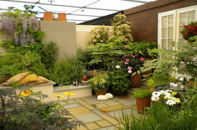 Lựa chon cây xanh nội ngoại thất cho không gian nhà bạn