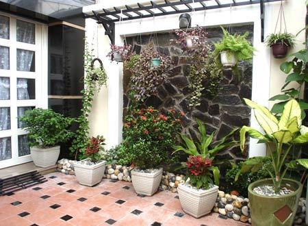 Cây xanh trang tri trong không gian nhà vườn