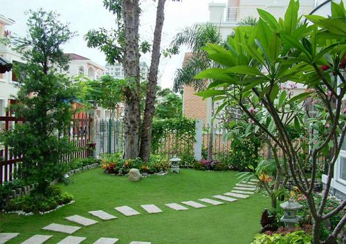 phong thủy cây xanh nhà vườn cay xanh,cay bong mat, trong cay xanh