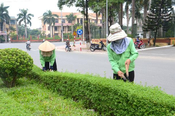 Công nhân đang cắt tỉa cây xanh