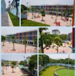 Trồng cây xanh cho trường học, trường mầm non phú diễn A, trường Tiểu Học, Trường Trung Học, Trường Đại Học