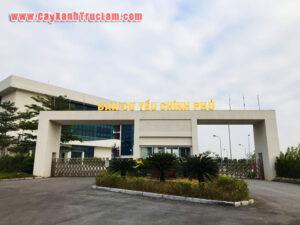 Trồng Cây Xanh Dự Án Ban Cơ Yếu Chính Phủ CNC Hòa Lạc